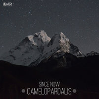 Camelopardalis — Since Now