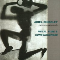 Metal Tube And Consciousness — Ariel Schibolet