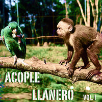 Acople Llanero Vol. 1 — сборник
