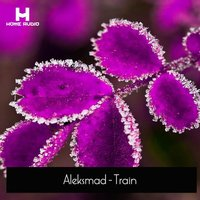 Train — Aleksmad