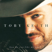 How Do You Like Me Now?! — Toby Keith