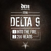 Into the Fire - 200 Heads — Delta 9