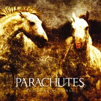 The Working Horse — Parachutes