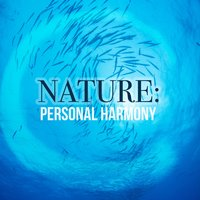 Nature: Personal Harmony — Sleep Sounds Of Nature