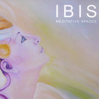 Meditative spaces — Ibis
