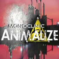 Monoclinic — Animalize