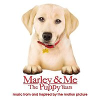 Marley & Me The Puppy Years music from and inspired by the motion picture — Heather Youmans