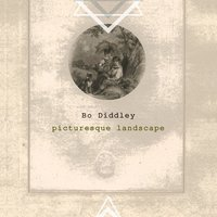 Picturesque Landscape — Bo Diddley