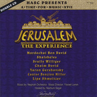 A Time For Music XVII (17) - Jerusalem - The Experience — сборник