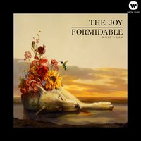 Wolf's Law — The Joy Formidable