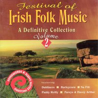 Festival Of Irish Folk Music - Volume 2 — сборник