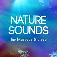 Nature Sounds for Massage & Sleep — Massage Tribe, Nature Sounds Nature Music, Nature Sounds for Sleep and Relaxation