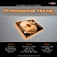 Vol.1 — Professional House