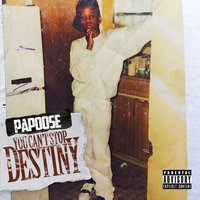 You Can't Stop Destiny — Papoose