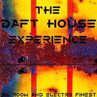 The Daft House Experience, Big Room and Electro Finest — сборник