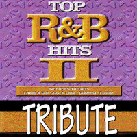Dubble Trubble Tribute to Top R&B Hits, Vol 2 — Dubble Trubble