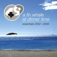 A Fin Whale At Dinner Time — Plus49