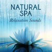 Natural Spa Relaxation Sounds — Sleep Music with Nature Sounds Relaxation