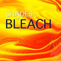 Shades of Bleach — Spirit