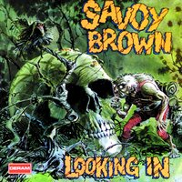 Looking In — Savoy Brown