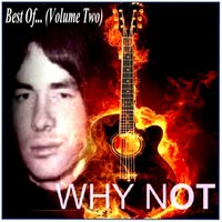 Best Of..., Vol. 2 — Why Not