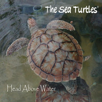 Head Above Water — The Sea Turtles