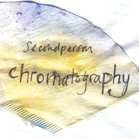 Chromatography — Second Person