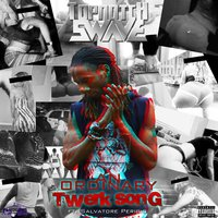 An Ordinary Twerk Song — TopNotch Swave, Salvatore Perigio
