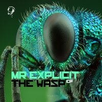 Wasp - EP — Mr Explicit