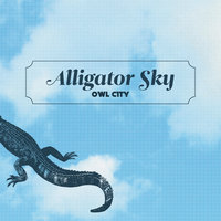 Alligator Sky — Owl City