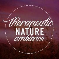 Therapeutic Nature Ambience — Ambient Nature Sounds