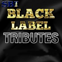 Sbi Tribute Black Label 2014 Week 1 — SBI Audio Karaoke
