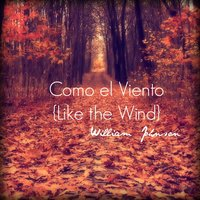 Como El Viento (Like the Wind) — William Johnson