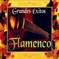 Grandes Éxitos Flamenco — сборник