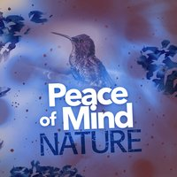 Peace of Mind: Nature — Mediation Sounds of Nature