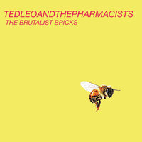 The Brutalist Bricks — Ted Leo and the Pharmacists