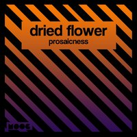 Prosaicness — Dried Flower
