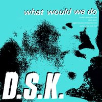 What Would We Do — DSK