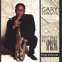 Don't Wait For Spring Remix — Gary Davis