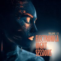 Electronica: Night Sessions, Vol. 13 — сборник