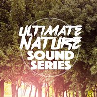 Ultimate Nature Sound Series — Nature Sound Collection, Nature Sounds Nature Music, Nature Sound Series, Nature Sound Collection|Nature Sound Series|Nature Sounds Nature Music
