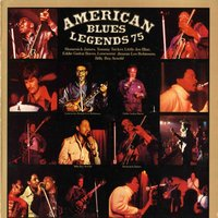 American Blues Legends '75 — Homesick James