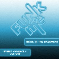 Street Violence / Vulture — Birds In The Basement