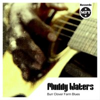 Burr Clover Farm Blues — Muddy Waters