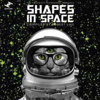Shapes in Space — Robert Luis