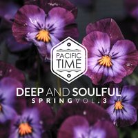 Deep and Soulful Spring Vol. 3 — сборник