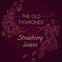 Strawberry Leaves — The Old Fashioned