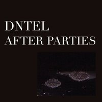 After Parties 2 — Dntel