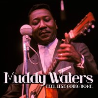 Feel Like Going Home — Muddy Waters