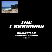 The T Sessions — Armadillo Underground